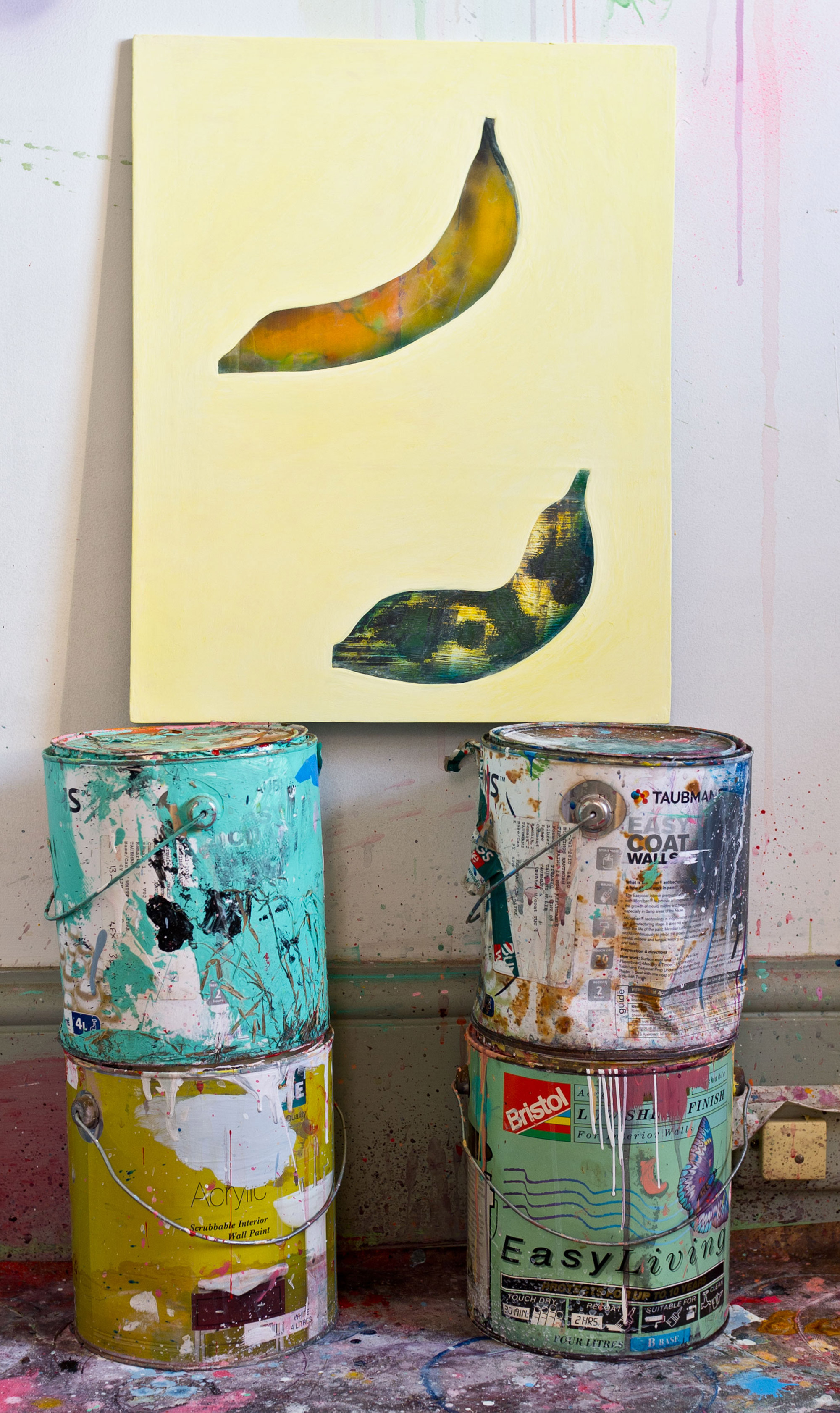 matlokgriffiths_2012_studio_unknownbananas